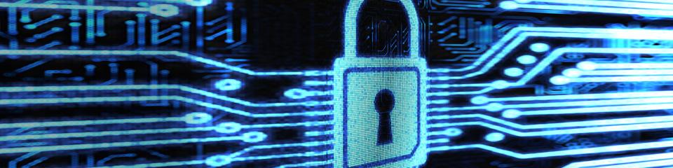 Medidas de seguridad tecnologica, redes y internet